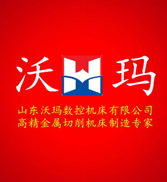 山东沃玛乐虎国际乐投夺宝平台有限乐虎游戏官网