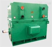 YXKS系列6kV(H355~630)中型高效高压电机