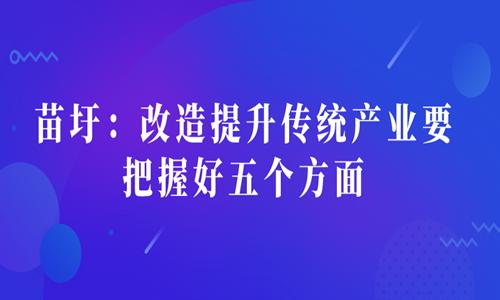 苗圩:改造提升传统产业要把握好五个方面
